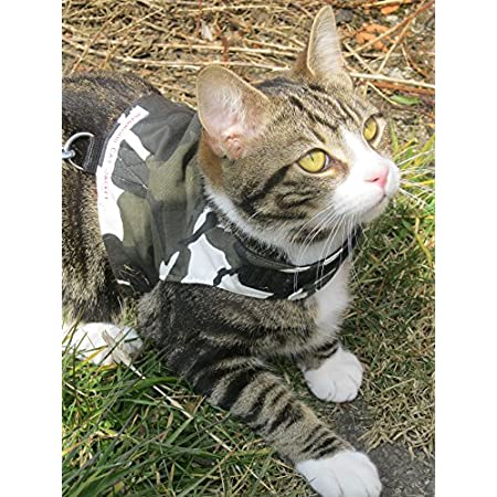 Mynwood Cat Jacke /Geschirre Arctic Kampf Erwachsene Katze Ausbruchsicher