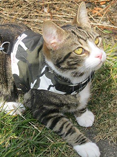 Mynwood Cat Jacke /Geschirre Arctic Kampf Erwachsene Katze Ausbruchsicher -