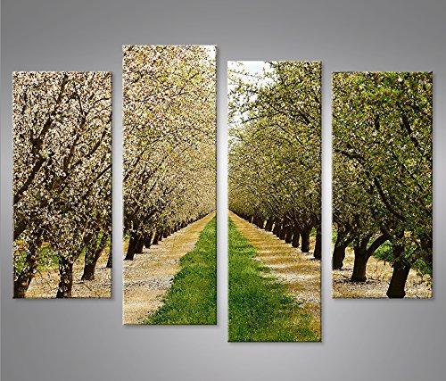 quadro-moderno-fioritura-primavera-alberi-mandorli-4p-stampa-su-tela-quadro-x-poltrone-salotto-cucin
