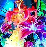 PLAT FIRM GERMINATIONSAMEN: 10 Birnen: Lilienzwiebeln, Lily Blumen, Nicht Lily Samen, seltene Blumenzwiebeln, blaue Lilien-Blumen