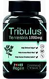 Power Regain Tribulus Terrestris- 90 Capsules