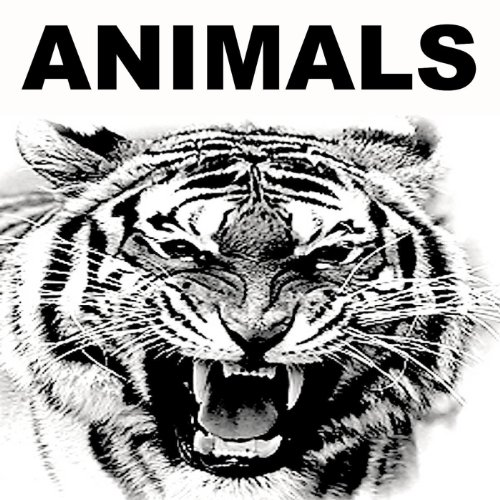 Animals (In The Style Of Marti...