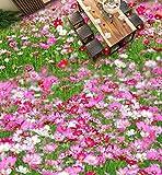 Wapel Fototapete 3D Wandtapete Benutzerdefinierte Größe Tapeten 3D Boden Wandbild Pflanzen Blumen 3D Stereoskopische 3D Bodenbelag Tapete Für Kinderzimmer 160x120cm