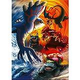 Fabulous Poster Affiche Pokemon Derniere Evolution Manga Anime(61x86cmB)