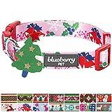 Blueberry Pet Festtagsfreude Geheimer Garten Baby-Pinkes Designer Hundehalsband, S, Hals 30cm-40cm, Verstellbare Halsbänder für Hunde