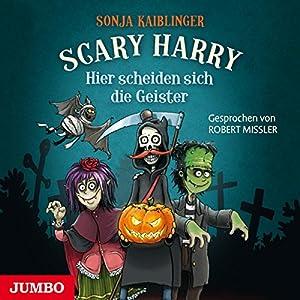Hier scheiden sich die Geister: Scary Harry 5