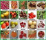 Tomaten Set 2 : In Deutschland angebaut, TOP Qualität Saatgut ohne Gentechnik und Pestizide, 100% Naturbelassen und samenfest, Tomate Fleischtomate Cherrytomate, Sammlung von Raritäten