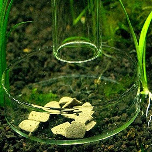 Dabixx Aquarium Acrylique crevettes alimentation Nourriture Plat Bol Mangeoire Plateau à nourritu
