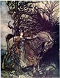 "6"" x 4"" Greetings Card Arthur Rackham Brunnhilde reveals herself to Siegmund"