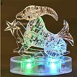 3D Crystal Puzzle 12 montierte Konstellationen basteln puzzle Spielzeug LED Licht (Capricorne)