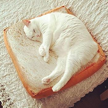 Wfz17Matelas lit pour chat, mignon doux Toast Slice Pain Forme Chien éponges d'anniversaire Chat en peluche pour animal domestique Tapis de coussin