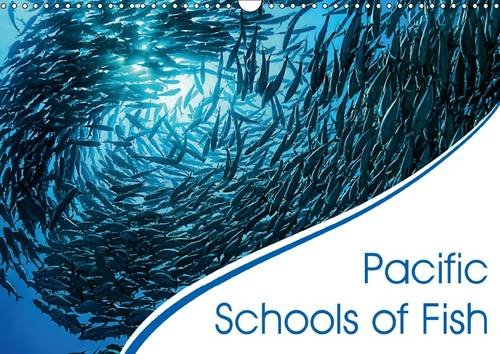 pacific-schools-of-fish-awesome-schools-of-sardines-jacks-and-barracudas-in-the-pacific-calvendo-nat