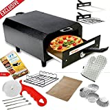 #8: Wellberg Iron Electric Tandoor (14-inch, Black)