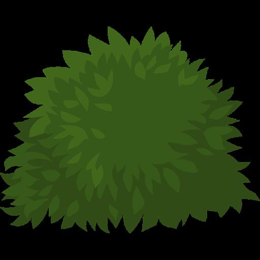 arbusti-ornamentali
