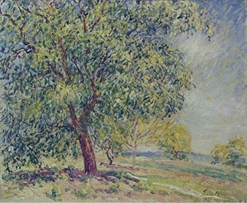 le-musee-sortie-ecrou-arbres-pres-de-sablons-poster-en-ligne-acheter-762-x-1016-cm