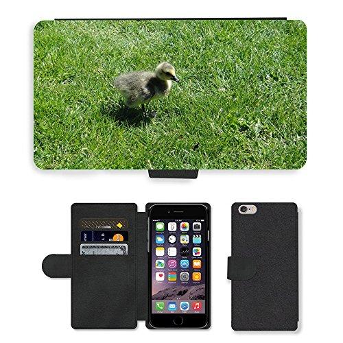 Just Cover Hot Stil Handy Karte Slot Hülle/Case/Brieftasche aus PU-Leder/m00139083Gosling Ente Küken Vogel Baby Young//Apple iPhone 6Plus 14cm