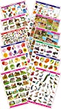 SPECTRUM Pre-School Educational Pictorial Charts - Set of 12