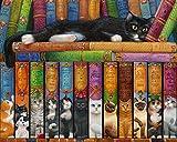 Katze Auf Einem Bücherregal Jigsaw Puzzle 1000 Teile