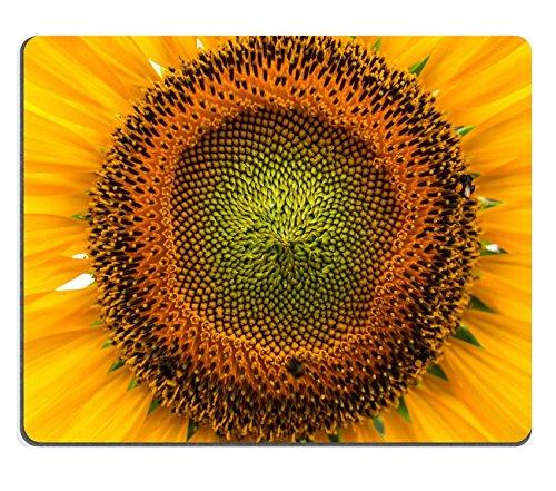 Luxlady Mousepads Toscana girasoli Image 37996840Customized Art desktop laptop Gaming
