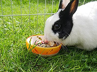 Rosewood Chew Resistant Carrot Bowl for Food and Treats for Small Animals by Rosewood
