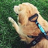 PETLEX Hundebürste & Katzenbürste Fellpflege Hund - Große Katze, Unterwollbürste & Unterfellbürste für Mittel und Lang Haar | Wohlfühlbürste Katzenkamm und Hundekamm auch für Pferde & Groß Tiere - 3