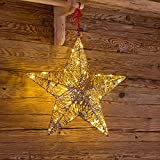 LuminalPark Weihnachtsstern Gold mit Glitter DM. 50 cm, 40 LEDs warmweiß, Innenbereich
