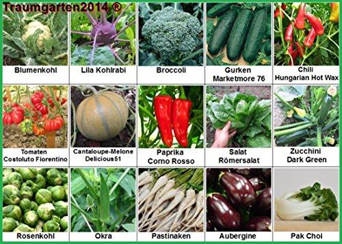 traumgarten2014-gemse-set-2-broccoli-pastinaken-rosenkohl-blumenkohl-gurken-cantaloupe-melone-zucchi
