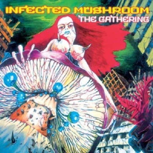 Gathering by Infected Mushroom (2011-05-04)