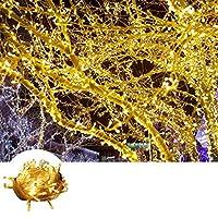 100 Ledli Pilli Dekor Lambası 10 Metre Gün Işığı
