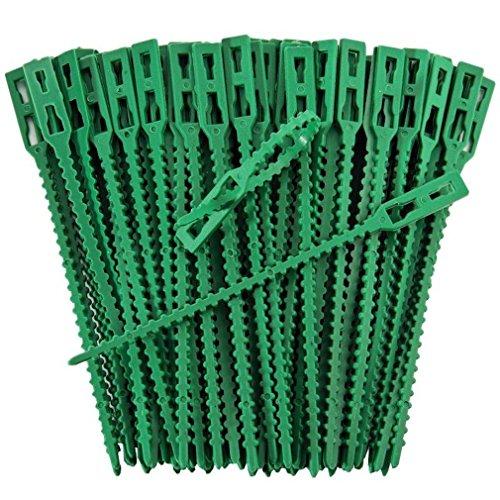 Iapyx® - Graffette per piante, robuste e stabili, per tralicci, arco per rose traliccio, (Grande Binder)