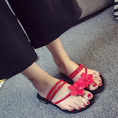 Transer ® Fashion femmes Mesdames Bohême fleur sandales tongs plage décontractée Slipper Rouge