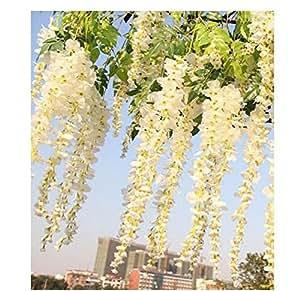 fatcolor - Lotto da 12 pz di glicine artificiale, in seta, per decorazione, matrimoni ed eventi, 105 cm bianco