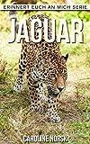 Jaguar: Ein Kinderbuch mit erstaunlichen Fotos und interessanten Fakten über Jaguar (Erinnert euch an mich Serie)