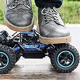 Ycco 1:14 RC 4WD Hochgeschwindigkeits-Amphibienfahrzeug Wasserdicht Offroad Elektro-Funkauto 45 km/h 2,4 GHz Doppelmotoren Racing Monster Crawler 360 ° Stunt Drifting Steigfahrzeug Junge Geburtstags