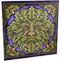Spirit Of The Forest - Greenman in Oak Tree with Acorns - Fantastic Design by Artist Lisa Parker ? 28cm Canvas Picture on Frame Wall Plaque / Wall Art