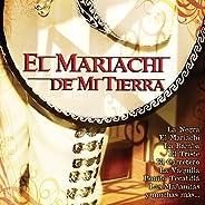 Tributo al Mariachi Vargas de Tecalitlán