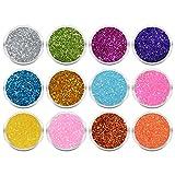 NAILFUN Caja de 12 Tarritos de Purpurina en Diversos Colores - Set 1