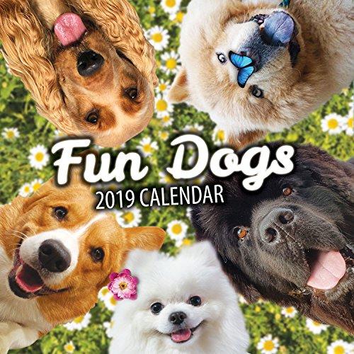 Fun Dogs 2019 Dog...
