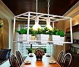 Jubaopen Fioriere impianto lampadario retrò pentole impianto cafe ristorante negozio di abbigliamento finestra balcone fiori lampadari retrò, grandi 65cm * 28cm, bianco