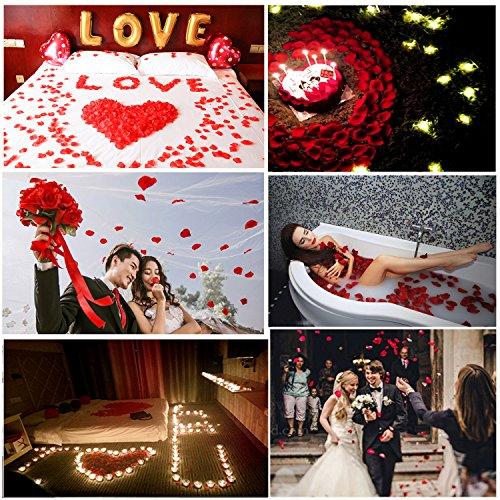^ Petali di Rosa in Seta – Meersee 2000pcs Petali di Rosa in Seta in Colore Rosso Scuro per Decorazione di Matrimonio lista dei prezzi