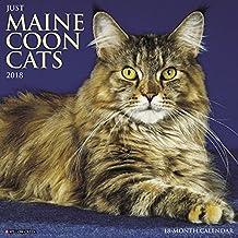 Just Maine Coon Cats 2018 Calendar