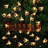 Honeybee String Lights, Solar String Lichter 30 LED wasserdichte Honey Bee Fairy Lights für Outdoor-Garten-Party Xmas Dekorationen