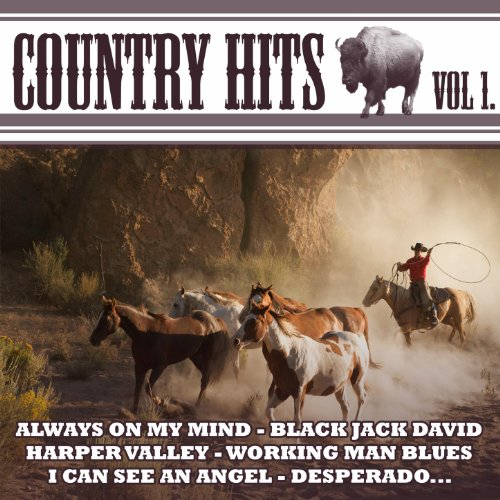 Country Hits Vol.1