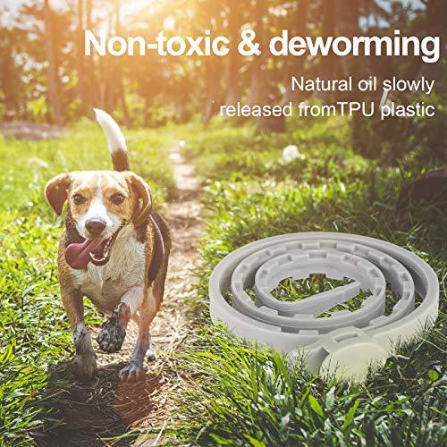 Zoom IMG-2 dothnix collare antipulci cane cani
