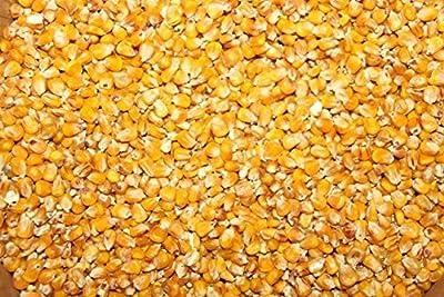 25kg Mais gelb von Futtermittel Kuhnwald GmbH - Du und dein Garten