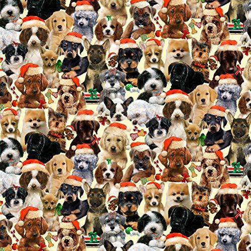 Henry Glass Weihnachtsstoff für Hunde, 100% Baumwolle, 0,5 m Schwarz -