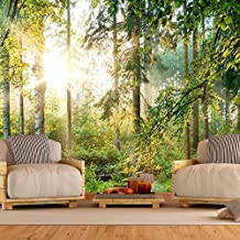 suchergebnis auf f r wald tapete. Black Bedroom Furniture Sets. Home Design Ideas