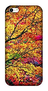 The Racoon Grip printed designer hard back mobile phone case cover for Apple Iphone SE. (Autumn)