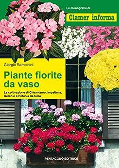 Piante fiorite da vaso la coltivazione di crisantemo - Crisantemi in vaso ...