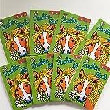 8 ZAUBERBLÖCKCHEN * PFERDE * im Set mit je 24 Seiten in DIN A8 von Lutz Mauder // Mitgebsel Kindergeburtstag Malbuch Pony
